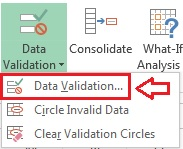 Data Validation Option